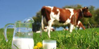 fabrică de lactate